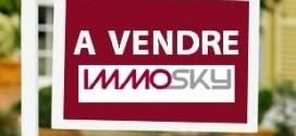 Un agent immobilier à l'agence Immosky à Toulouse